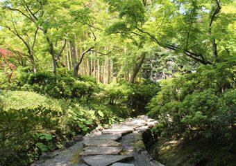 八幡市立松花堂庭園・美術館 写真